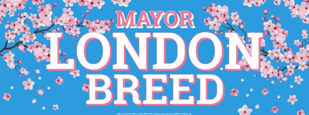 Join Mayor London Breed in the Cherry Blossom Festival Parade